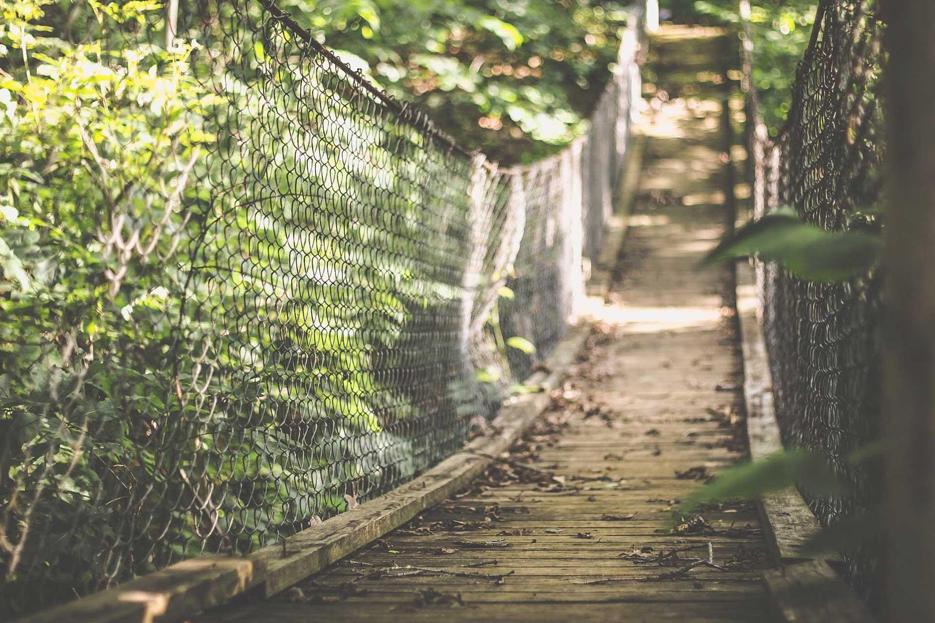 bridge-mintahama